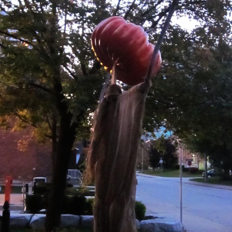 Hamilton Scarecrow. Photo by @erskinec