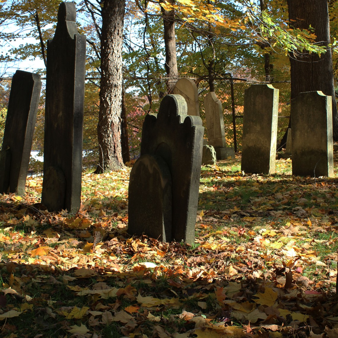 Binkley 1803 Cemetery, Hamilton (Ont). Photo by @erskinec