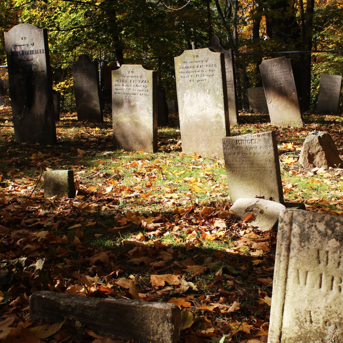 Binkley 1803 Graveyard, Hamilton (Ont). Photo by @erskinec