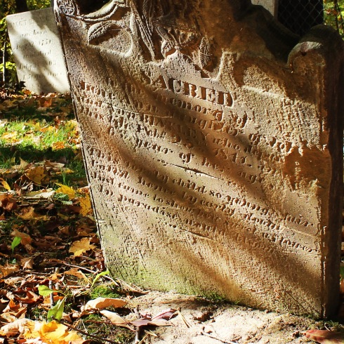 Jane Ann who died on Feb 23, 1848 at the age of 3 years, Binkley Pioneer Cemetery, Hamilton (Ont). Photo by @erskinec