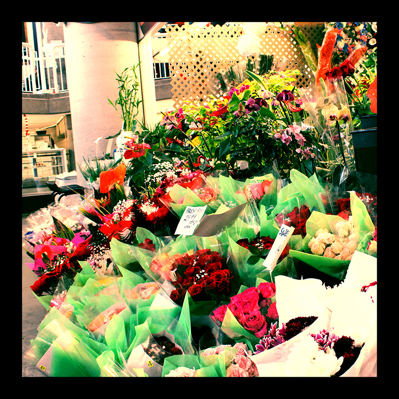 Market Flowers, Hamilton (Ont). Photo by @erskinec