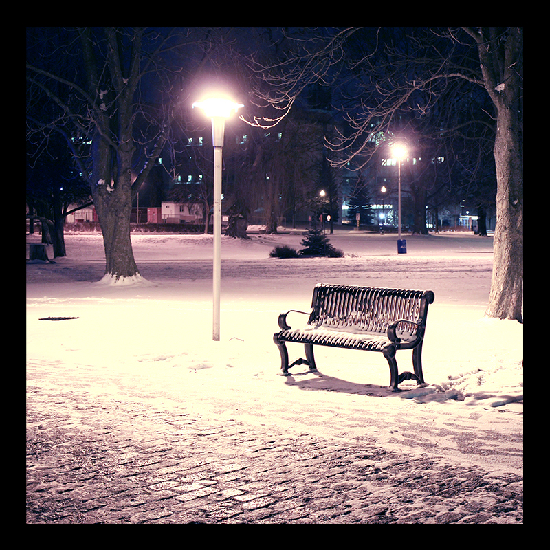Bench, Hamilton (Ont). Photo by @erskinec